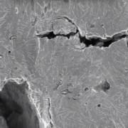 visualizado a nivel microscópico paso a paso cómo se comportan a fractura determinados aceros cuando se aplica una carga sobre ellos